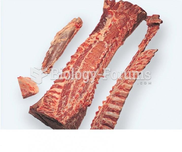 Fully Boned Pork Loin