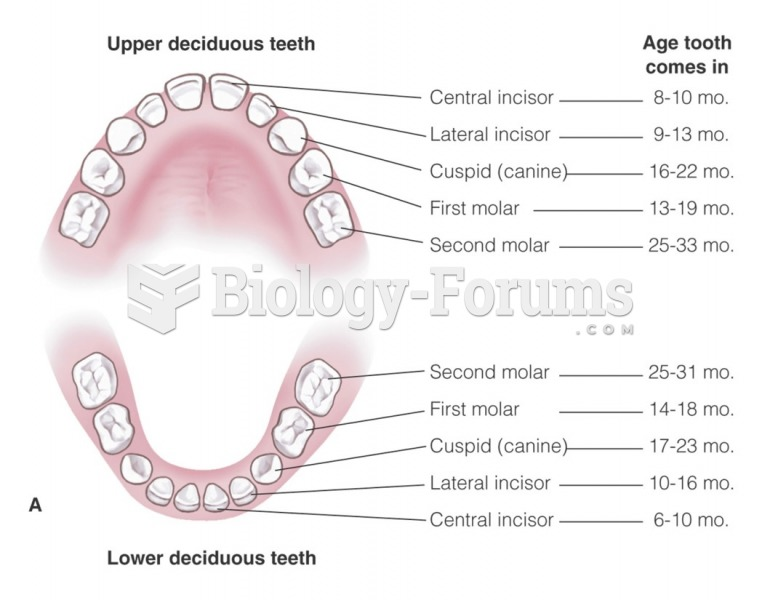 Deciduous and permanent teeth