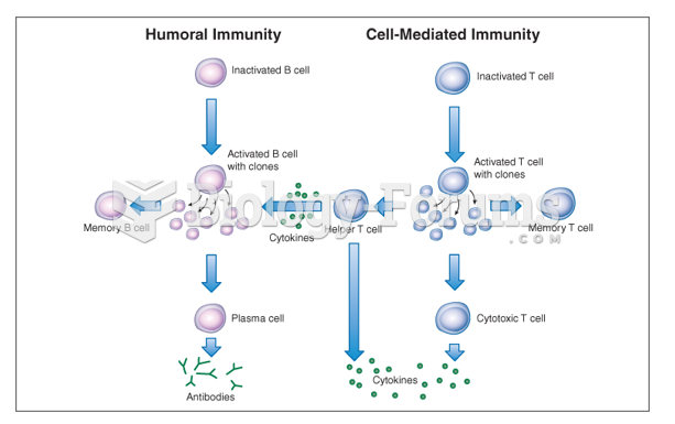 The immune response results from activation of the humoral and cell-mediated immune systems