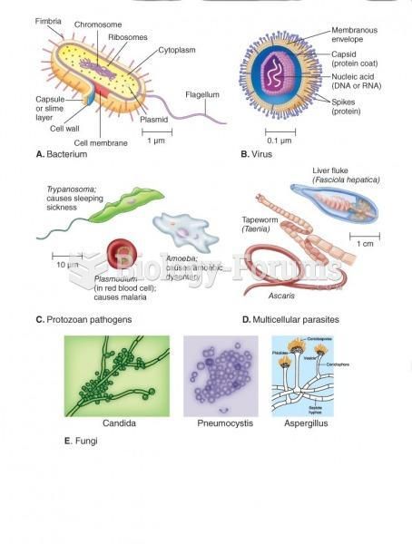 Type of pathogen organism