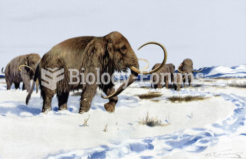 Mammoths – Larger Cenozoic Mammals
