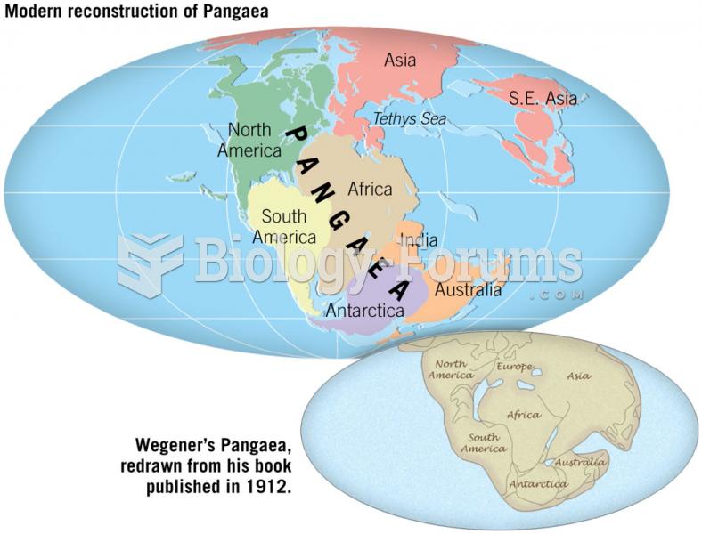 Pangaea 200 Million Years Ago