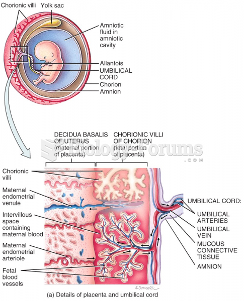 Embryonic Period - 12th week