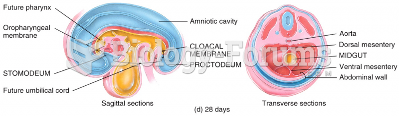 Embryonic Period