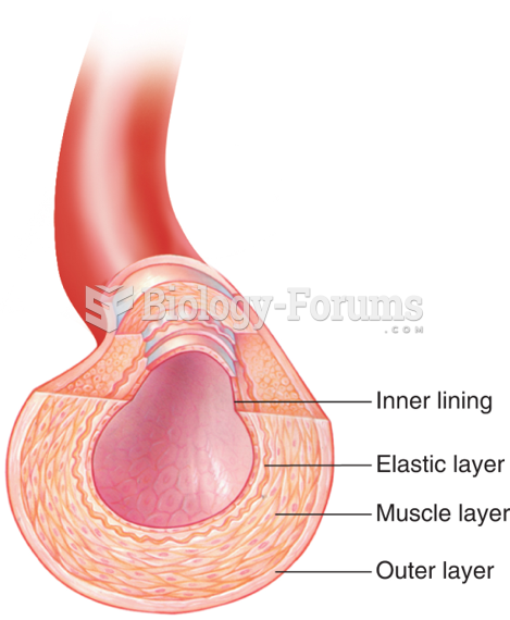 The Structure of an Artery
