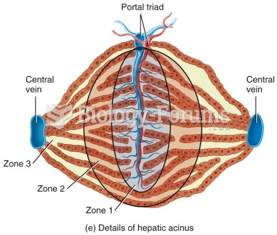 Hepatic Acinus Model of Liver Function