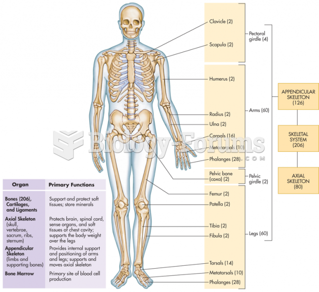 The Skeletal System and Its Functions