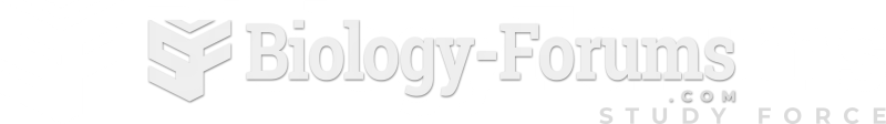 Website Logo (Jan. 2019 to Sept. 2019)