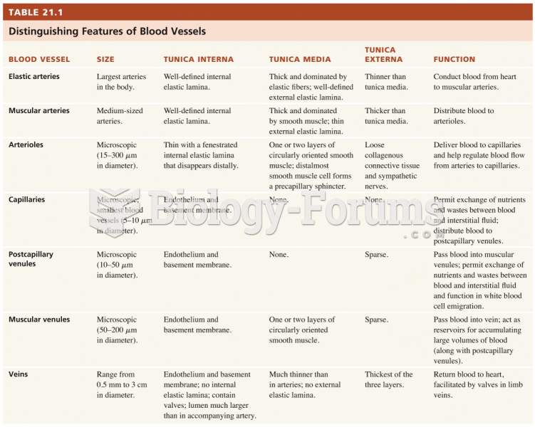 Distingutioning features of blood vessels