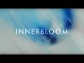 RÜFÜS DU SOL  Innerbloom (Official Video)