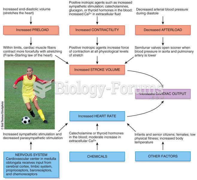 Factors that Increase Cardiac Output