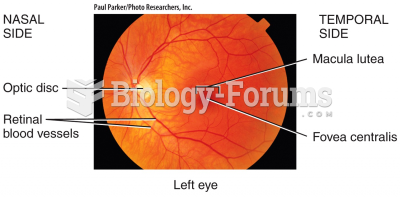 optic disc (blind spot)