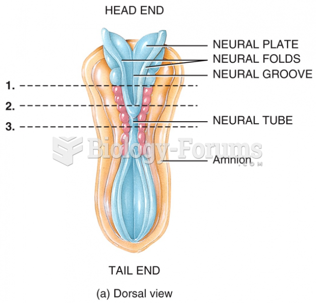 Development of the Nervous System: Dorsal View