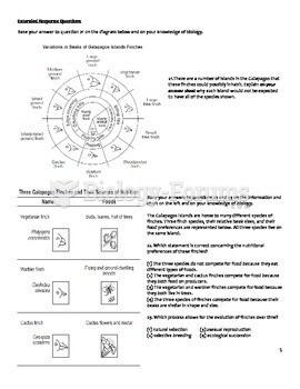Plant Biology Worksheet