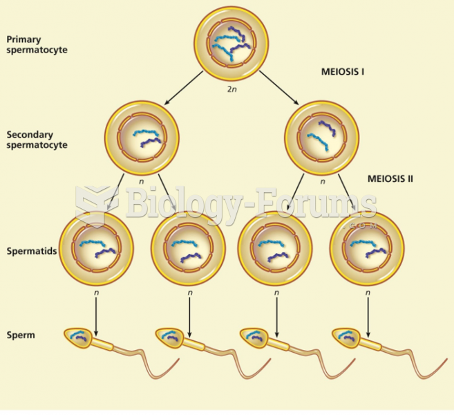 A comparison of sperm production and egg production in humans