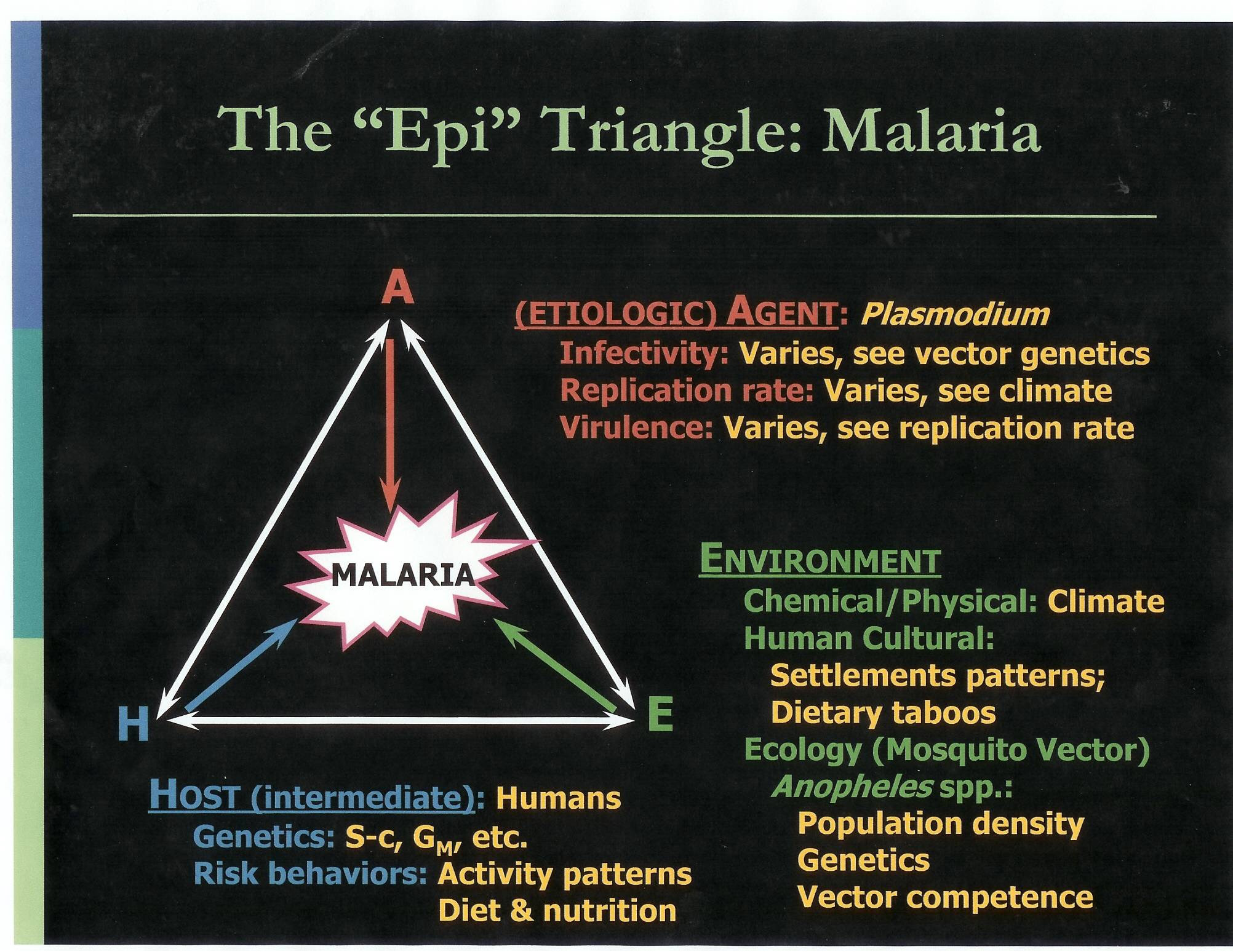 epidemiological triangle model of alcoholism