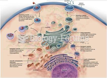 endomembrane system biology forums gallery : endomembrane system diagram - findchart.co