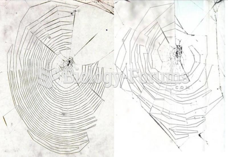 Left: This web was woven by a 17-day-old spider, showing regular patterns. Right: This web was woven