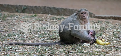 Young macaques are breastfed by their mothers