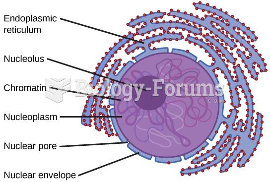 Characteristics of a Eukaryotic Cell