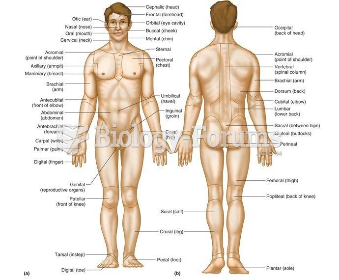 Body Region Terms