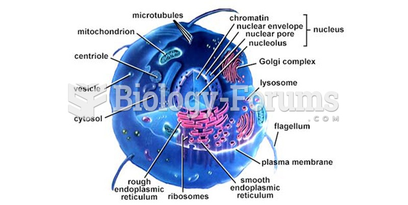 A Human Cell