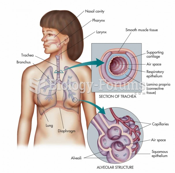 The respiratory system: nasal cavity, pharynx, larynx, trachea, bronchus, and lung with expanded vie