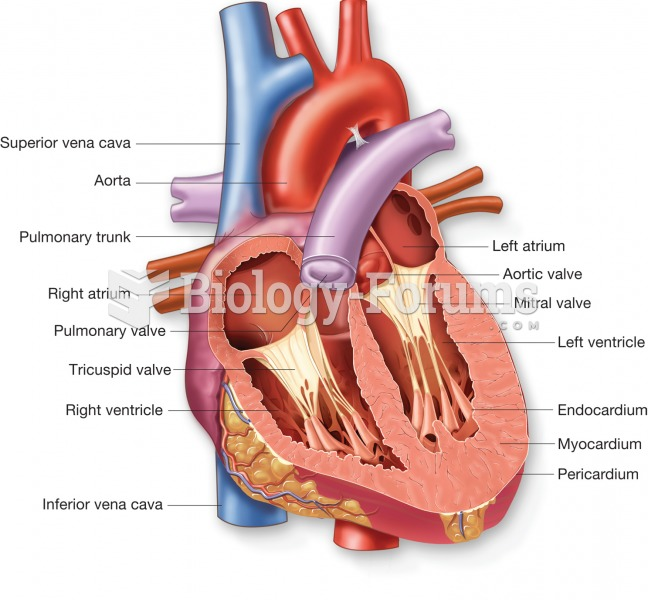 Internal view of the heart illustrating the heart chambers, heart layers, and major blood vessels as