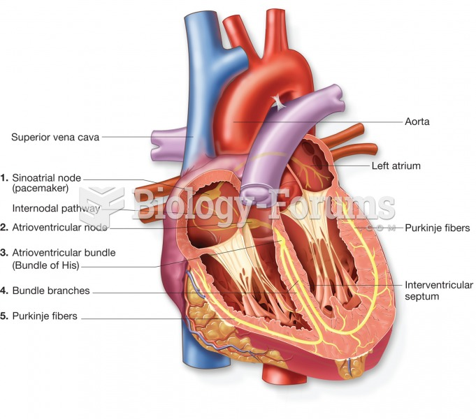 The conduction system of the heart; traces the path of the electrical impulse that stimulates the he