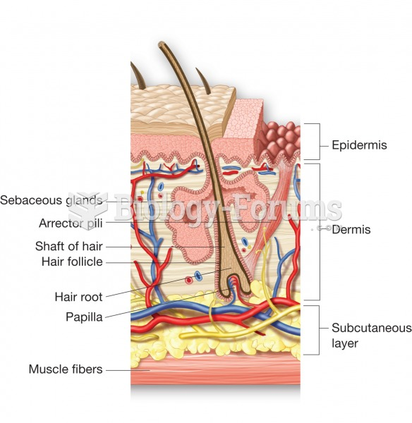 Structure of a hair and its associated sebaceous gland.