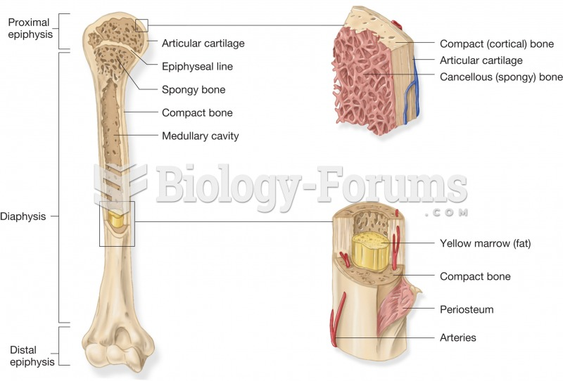 Components of a long bone. The entire long bone is on the left side accompanied by a blowup of the p