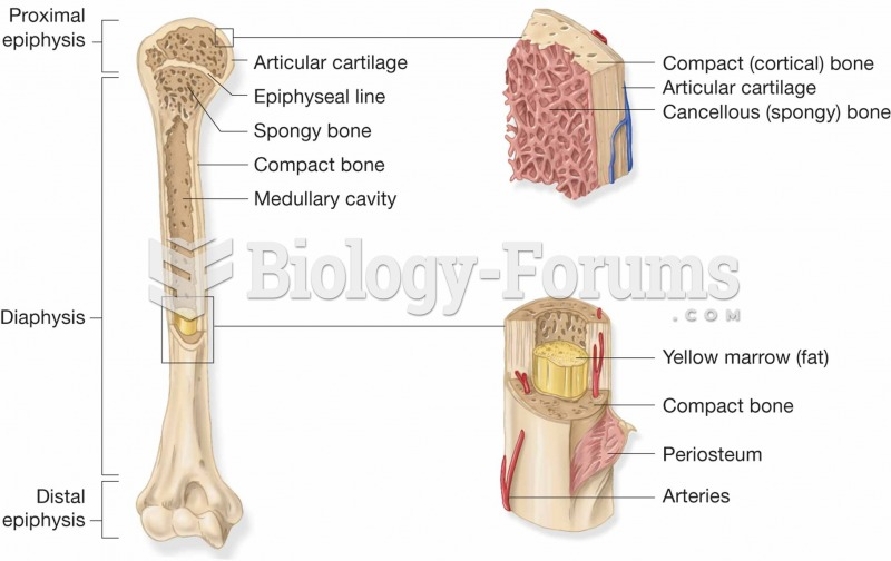 Features found in a long bone.
