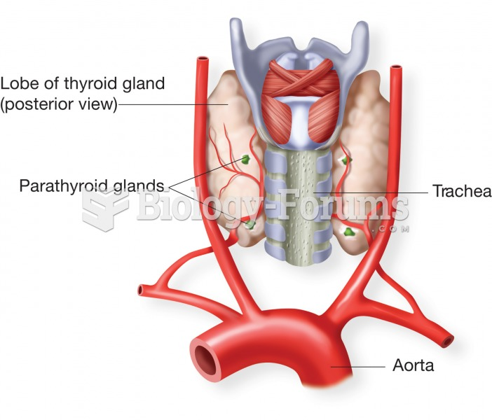 The parathyroid glands. These four glands are located on the posterior side of the thyroid gland. Th