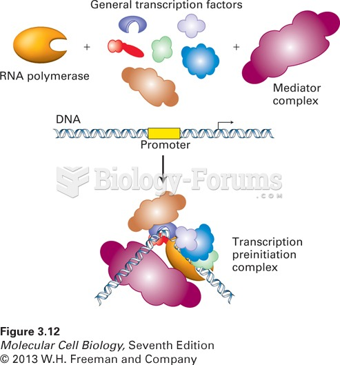 A macromolecular machine: the transcription-initiation complex