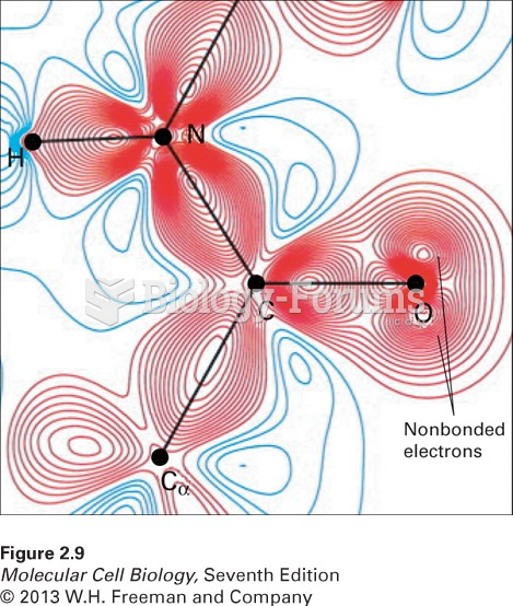 Distribution of bonding and outer nonbonding electrons in the peptide group