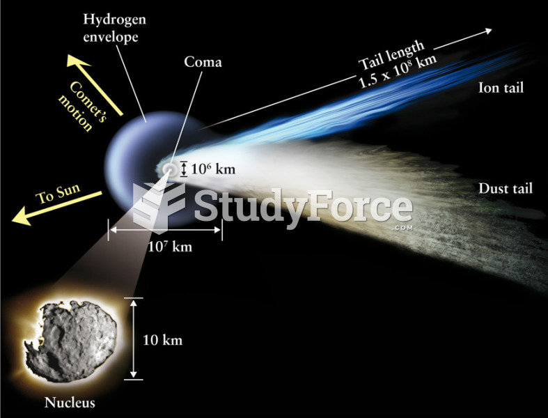 The Structure of a Comet