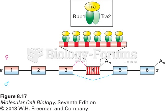 Model of splicing activation by Tra protein and the SR proteins Rbp1 and Tra2