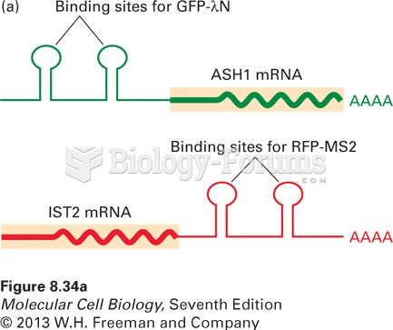 Transport of mRNP particles from a yeast mother cell into the bud
