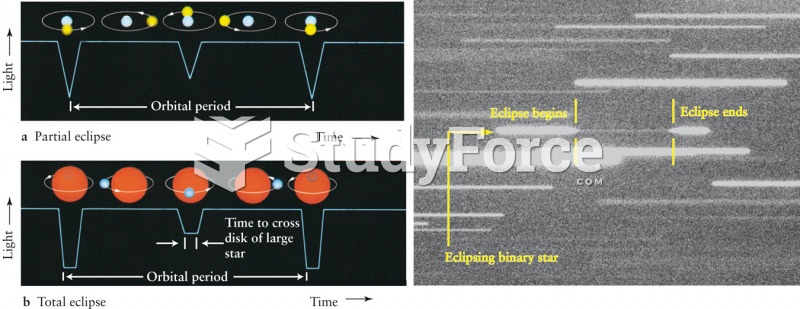 Representative Light Curves of Eclipsing Binaries