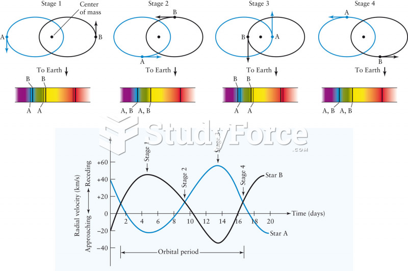 Spectral Line Motion in Binary Star Systems