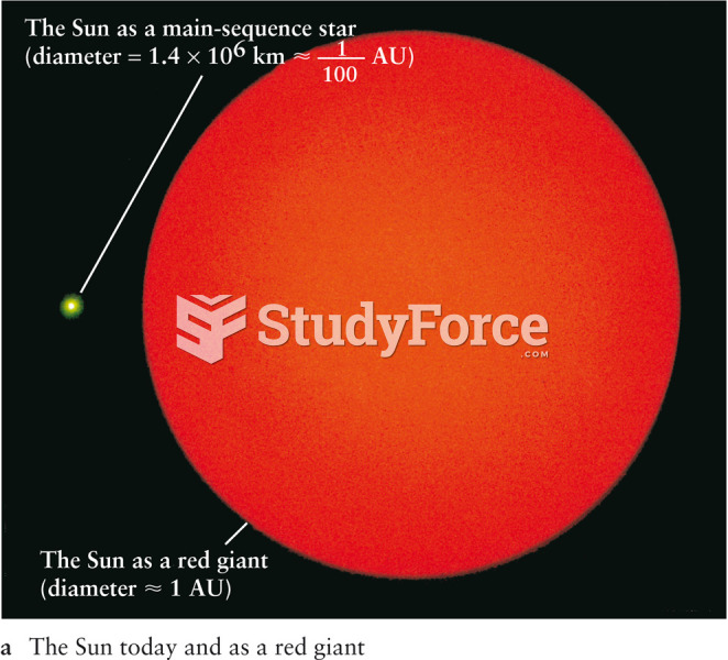 The Sun Today and as a Giant