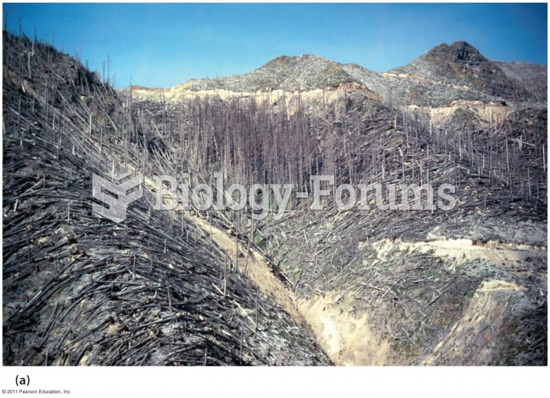 After the Eruption of Mount St. Helens in 1980