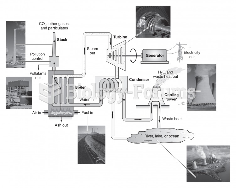 Diagram of a typical fossil-fueled power plant