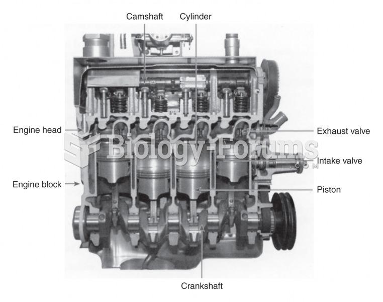 Cutaway diagram of a four cylinder gasoline engine