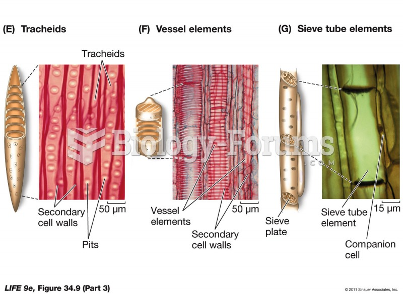 Plant Cell Types (Part 3)