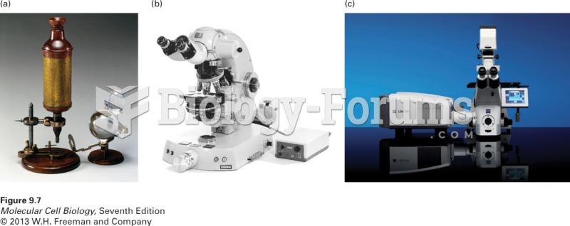 Development of the light microscope