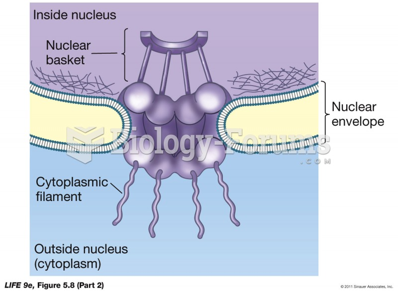 The Nucleus Is Enclosed by a Double Membrane