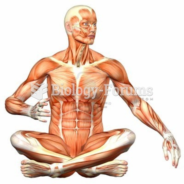 human muscles position sitting yoga
