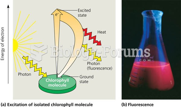Excitation of isolated chlorophyll by light.