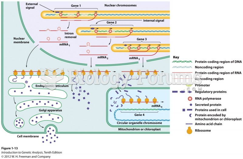 The flow of information in a eukaryotic cell